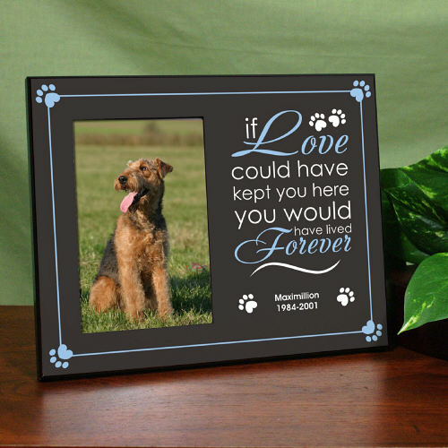 pet memorial picture frame if love could have kept you - Dog Memorial Frame