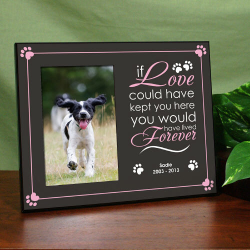 Pet Memorial Picture Frame - If love could have kept you